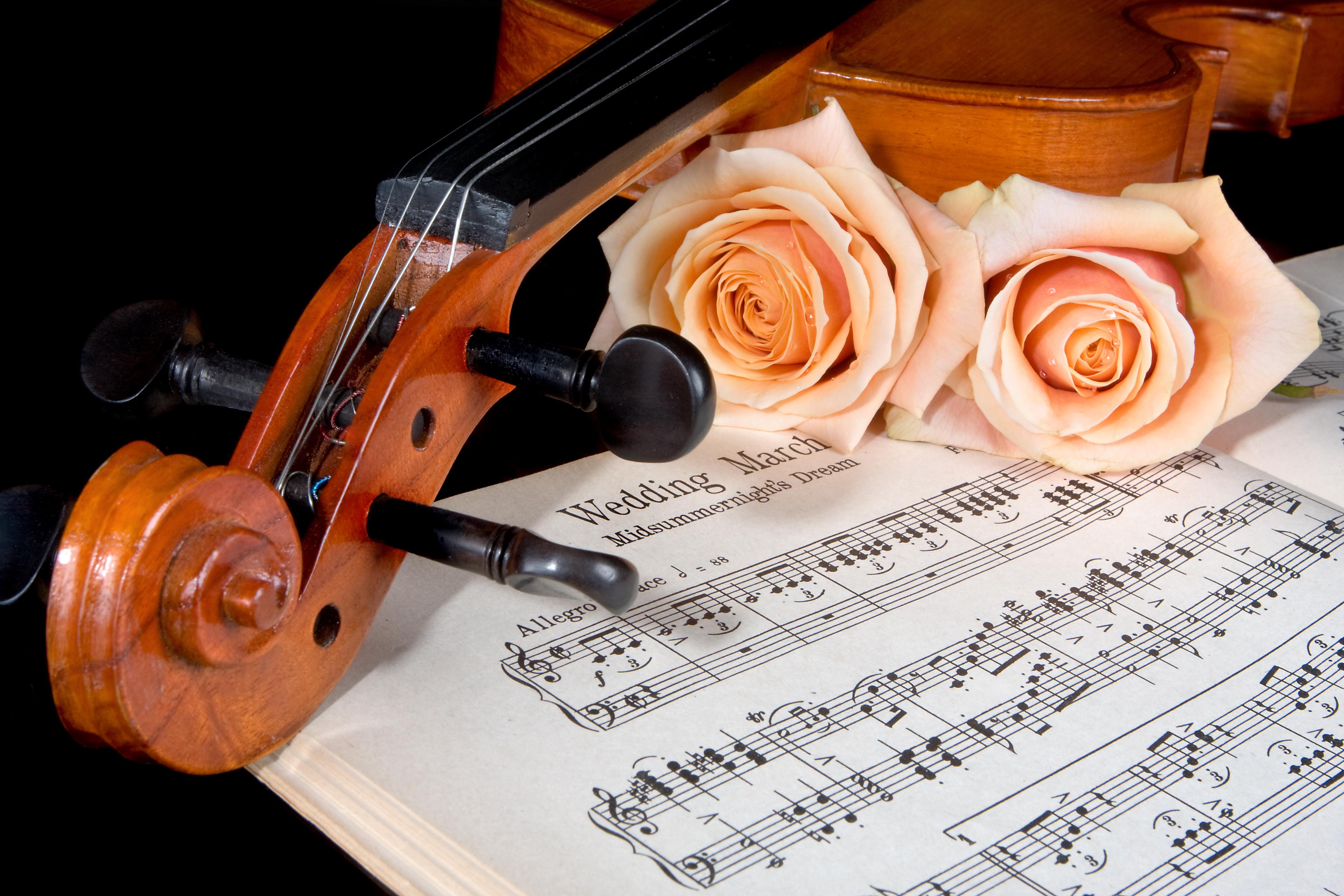 bruiloft muziek alla classica